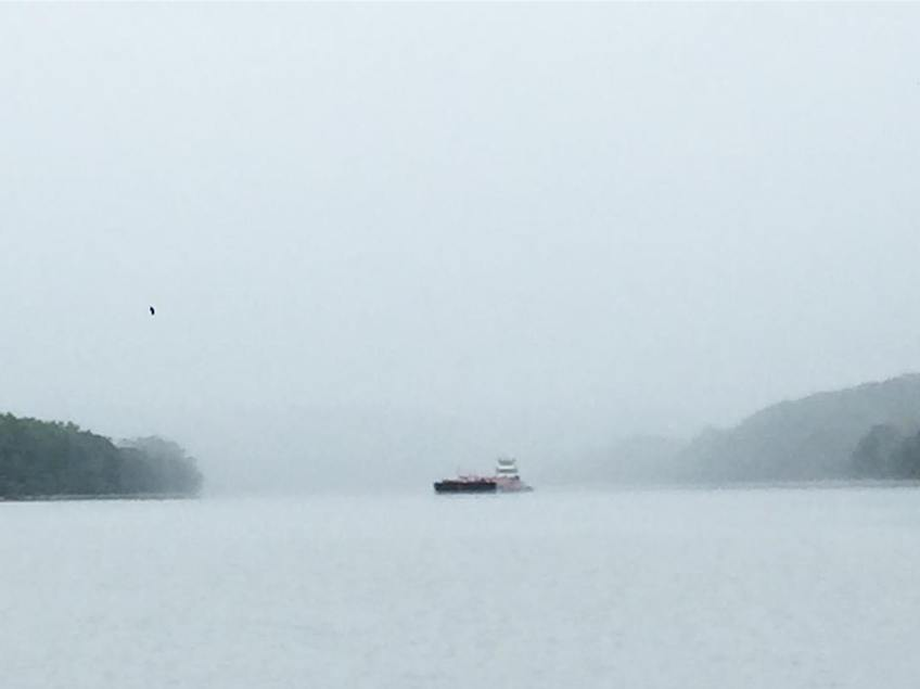 Barges in the mist. People ask us constantly if the tows give us any trouble. After over 1000 miles on inland waters we can definitively say, No, towboat crews are professional, more courteous, more responsible, and create less wake than big yachts