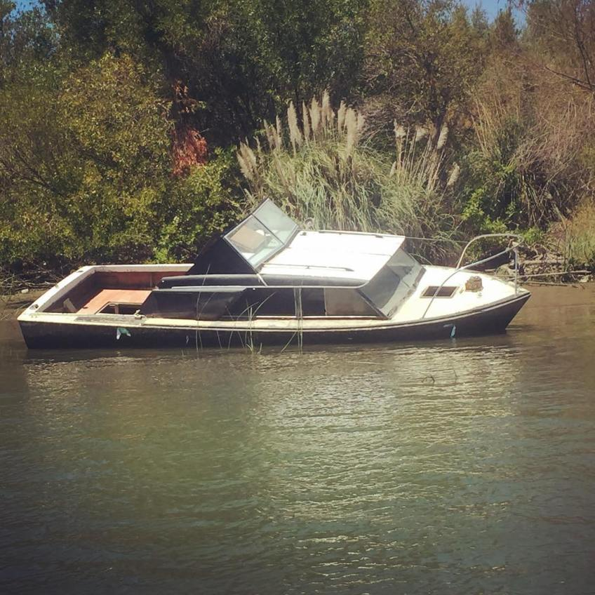 One of a surprising number of visible wrecks in the Sacramento Delta