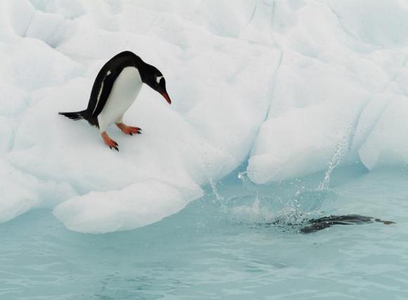 antarctica_04