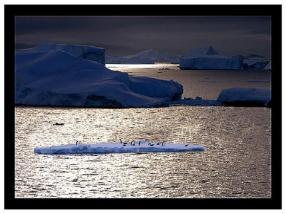 antarctica_08
