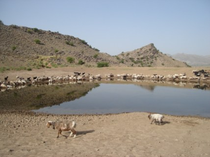 The small dam, people have constructed for drinking water