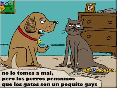 https://i2.wp.com/peoresnada.com/pictures/h/perro_vs_gato.jpg