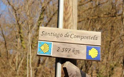 Camino de Santiago: Qué meter en la mochila y otros consejos imprescindibles.