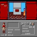 Dungeon Magic: Sword of the Elements NES  caminando a través de una ciudad