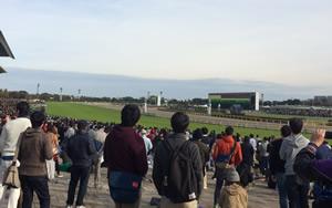 東京(府中)競馬場