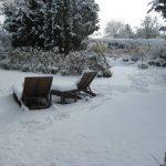 El jardín en enero; jardines de invierno