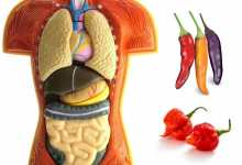benefici fegato peperoncini