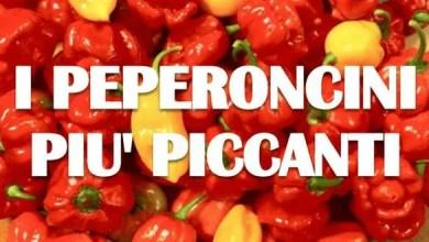 peperoncini-più-piccanti