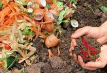 concime organico naturale