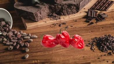 cioccolato al peperoncino piccante