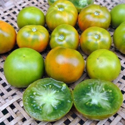 Tomate // Green Lime