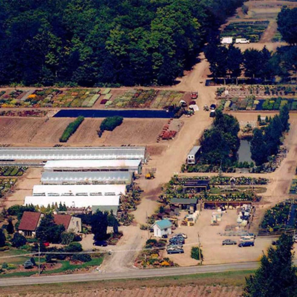 Centre Jardin 2004 Pepiniere Villeneuve