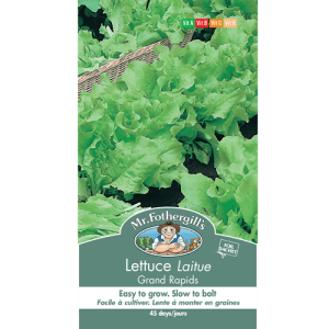 Laitue Grand Rapids – Mr.Fothergill's