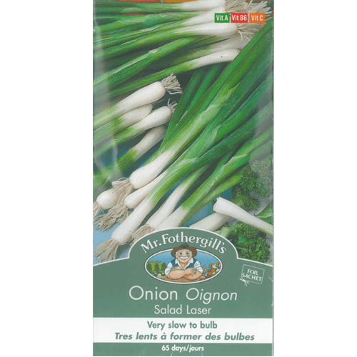 Semences oignon Salad Laser Mr.Fothergill's