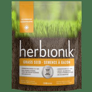Semence à Gazon Pour Endroit Ensoleillé – Herbionik
