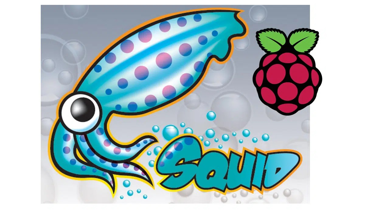 Raspberry pi squid featured image