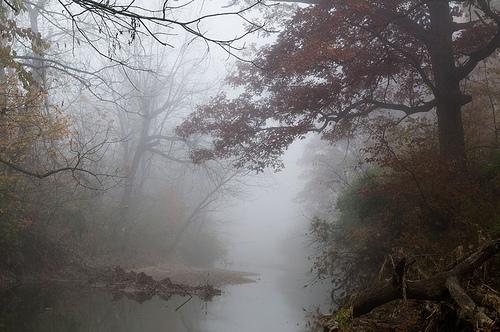 shoal-creek