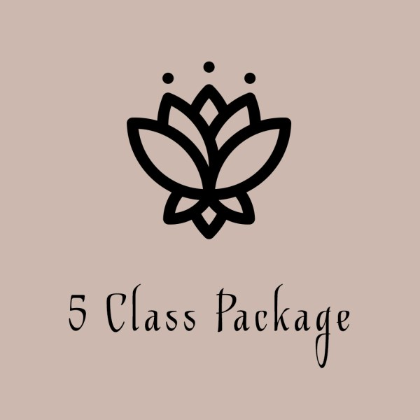 5 class package