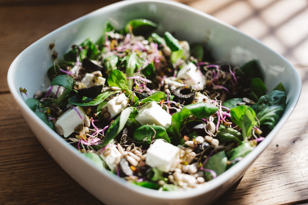 Photo of healing food green salad with sprouts, black olives and tofu chunks on top