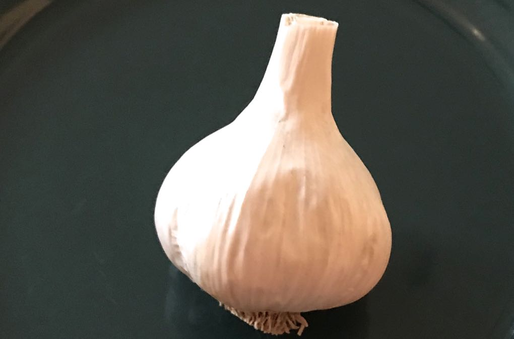 Photo of bulb of garlic