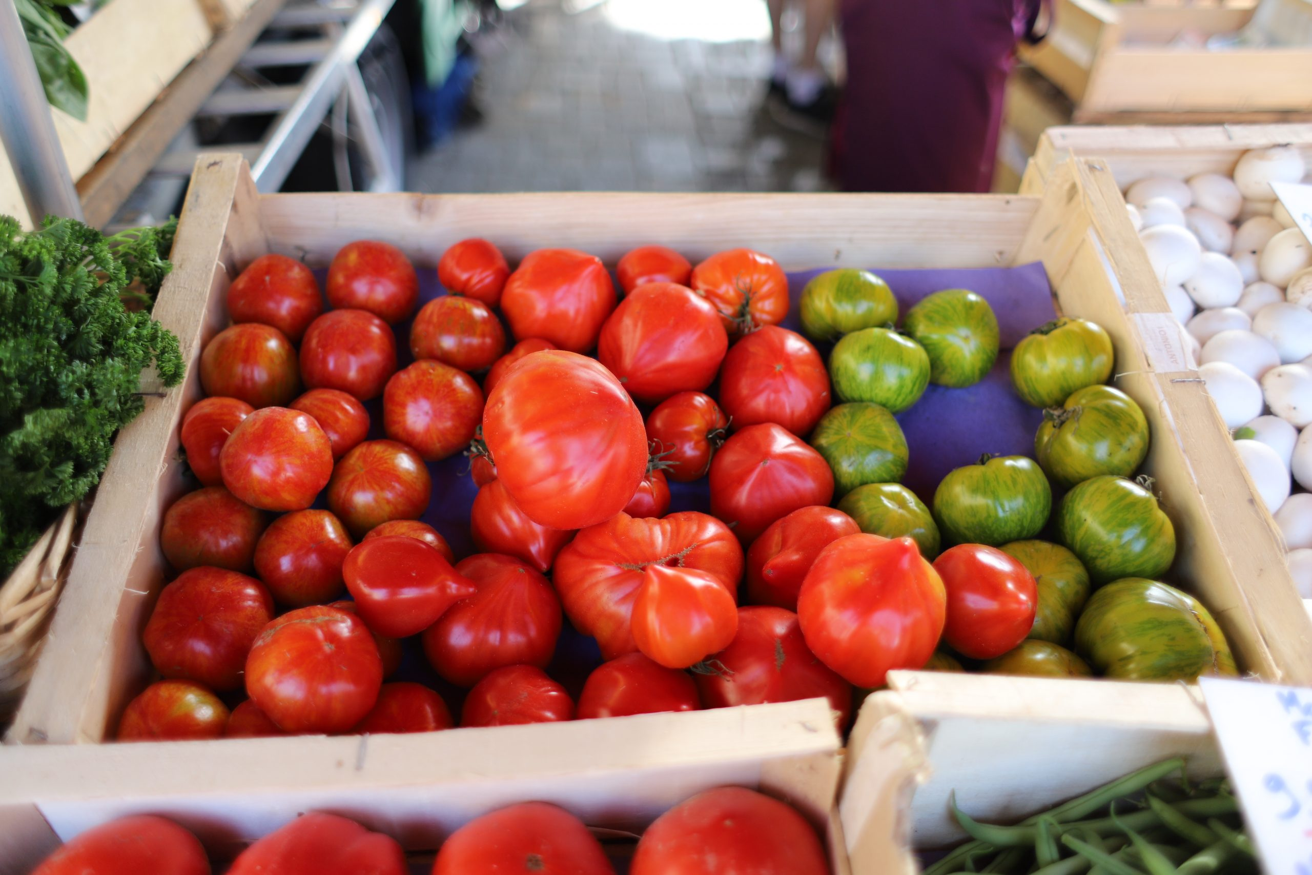 Tomatoes from Bretagne, France
