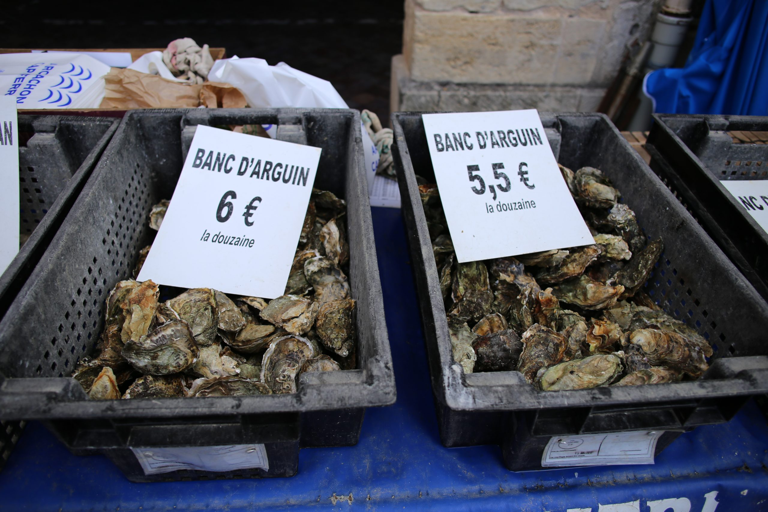 Aquitaine oysters, France