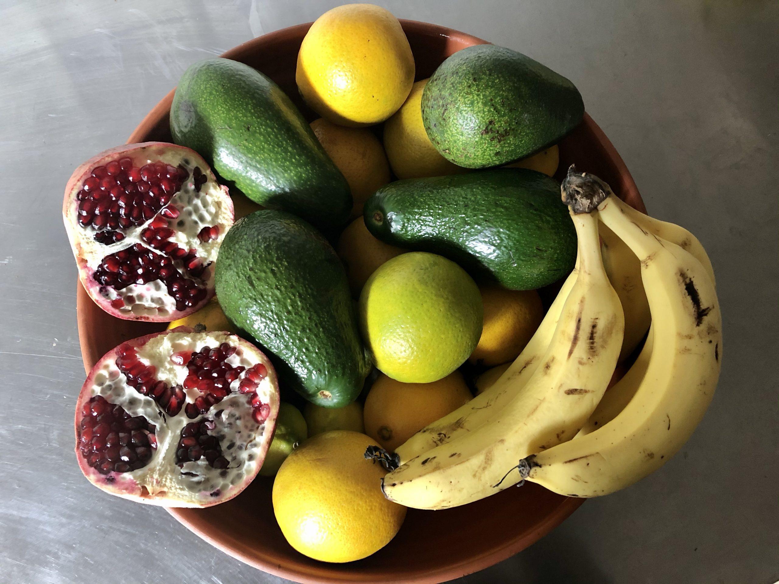 Autumn Still Life: Avocado, Pomegranates, Bananas and Oranges