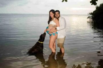 otos de maternidad con mascotas