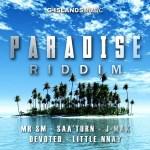 paradise riddim cover