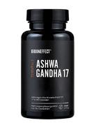 ashwa-gandha-brain-effect