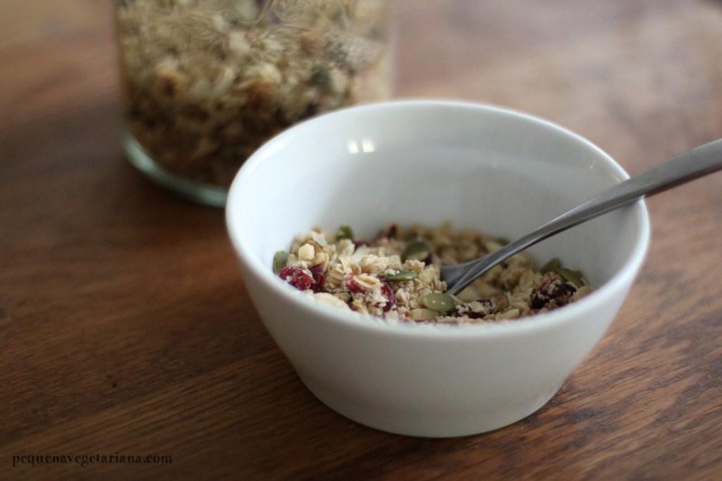 Receita para fazer sua própria granola. Cranberry, aveia, agave, e sementes de abóbora.