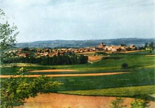 Perafita 1957