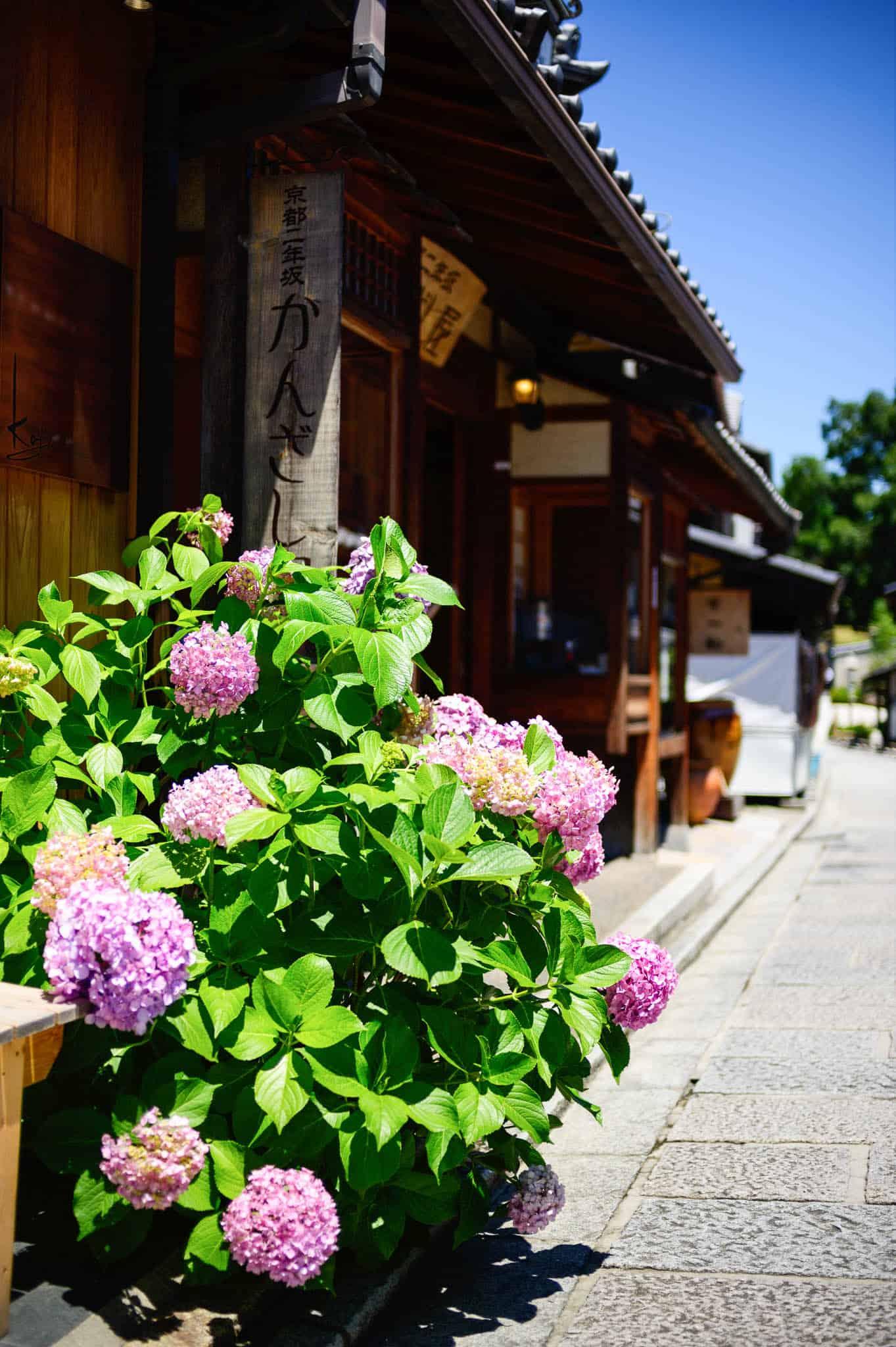 kyoto nineizaka district