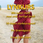 Lynkurs slankeprogram ebog