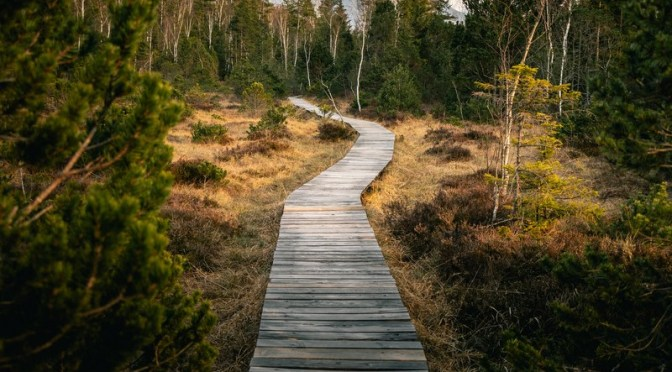 Stor bevidsthed kræver små skridt