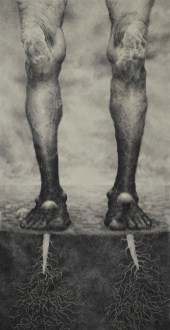 Mario Javoran - Korijeni, ugljen u olovci, 1000x500mm, 2016.