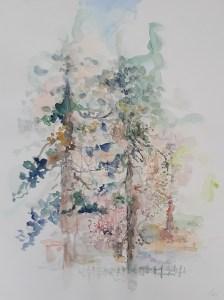 Borovi - 40 x 30 cm, akvarel, 2018.