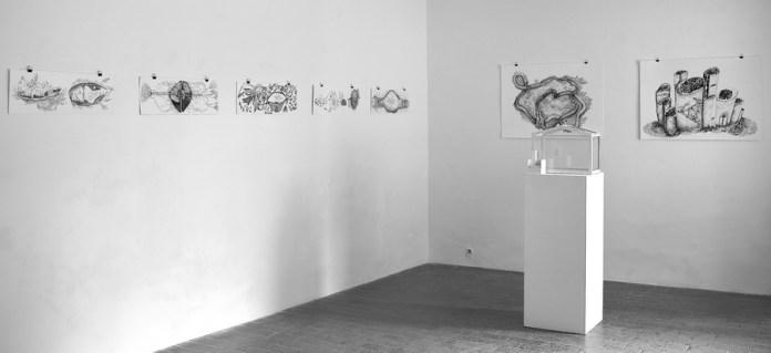 Postav izložbe Unutar, Galerija ZILIK; foto: Matija Smuk