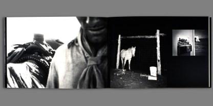 Horse is Good by Viggo Mortensen