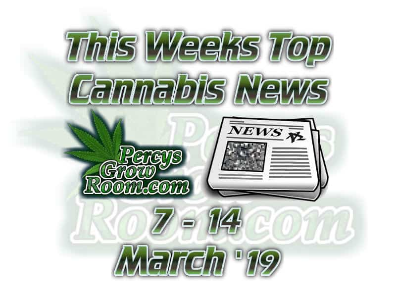 this weeks top cannabis news, 7-14th march 19, Cannabis growers forum & community, How to grow cannabis, how to grow weed, a step by step guide to growing weed, cannabis growers forum, need help with sick plant, what's wrong with my cannabis plant, percys Grow Room, the Grow Room, percys Grow Guides, we'd growing forum, weed growers community, how to grow weed in coco, when is my cannabis plant ready for harvest, how to feed my cannabis plant, beginners guide to growing weed, how to grow weed for personal use, cannabis plant deficiency, how to germinate cannabis seeds, where to buy cannabis seeds, best weed growers website