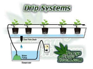 Drip Systems, auto feeders for growing cannabis, Cannabis growers forum & community, How to grow cannabis, how to grow weed, a step by step guide to growing weed, cannabis growers forum, need help with sick plant, what's wrong with my cannabis plant, percy's Grow Room, the Grow Room, Cannabis Grow Guides, weed growing forum, weed growers community, how to grow weed in coco, when is my cannabis plant ready for harvest, how to feed my cannabis plant, beginners guide to growing weed, how to grow weed for personal use, cannabis plant deficiency, how to germinate cannabis seeds, where to buy cannabis seeds, best weed growers website, Learn to grow cannabis, is it easy to grow weed