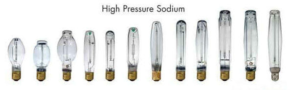 A Selection of High Pressure Sodium Bulbs, HPs, Cannabis growers forum & community, How to grow cannabis, how to grow weed, a step by step guide to growing weed, cannabis growers forum, need help with sick plant, what's wrong with my cannabis plant, percys Grow Room, the Grow Room, percys Grow Guides, we'd growing forum, weed growers community, how to grow weed in coco, when is my cannabis plant ready for harvest, how to feed my cannabis plant, beginners guide to growing weed, how to grow weed for personal use, cannabis plant deficiency, how to germinate cannabis seeds, where to buy cannabis seeds, best weed growers website, how to dry cannabis