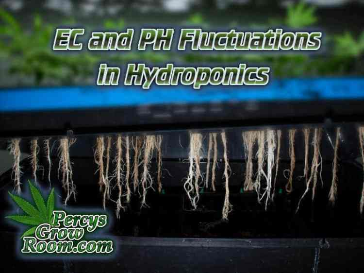 Ec and PH Fluctuations in hydroponics, Cannabis Growers forum, weed growers forum, How to grow legal cannabis, a step by step guide to growing weed, cannabis growing guide, tips for marijuana growers, growing cannabis plants for the first time, marijuana growers forum, marijuana growing tips, cannabis plant problems, cannabis plant help, marijuana growing expert advice