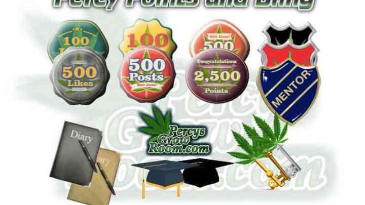 Verified member, Percy points and bling, Cannabis growers forum & community, How to grow cannabis, how to grow weed, a step by step guide to growing weed, cannabis growers forum, need help with sick plant, what's wrong with my cannabis plant, percys Grow Room, the Grow Room, percys Grow Guides, we'd growing forum, weed growers community, how to grow weed in coco, when is my cannabis plant ready for harvest, how to feed my cannabis plant, beginners guide to growing weed, how to grow weed for personal use, cannabis plant deficiency, how to germinate cannabis seeds, where to buy cannabis seeds, best weed growers website