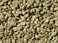 Le café vert pour maigrir: marche-t-il vraiment?