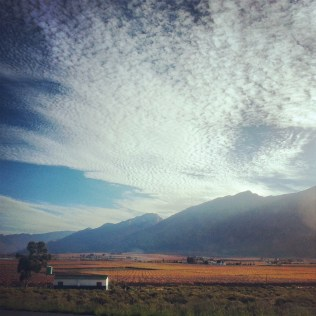 Driving back from Oupa's memorial service in Heidelberg, we caught the Hex River Valley in its full Autumn regalia.