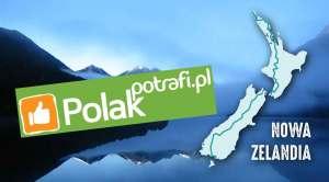 Logo Polak Potrafi