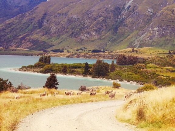 Wakatipu Lake - Otago - New Zealand - © Claire Blumenfeld