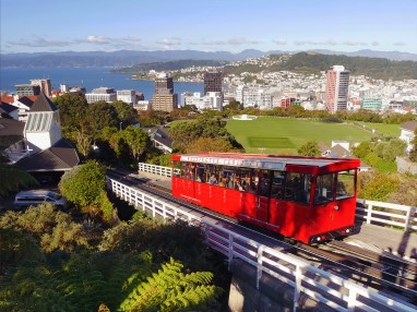 Wellington_1_web