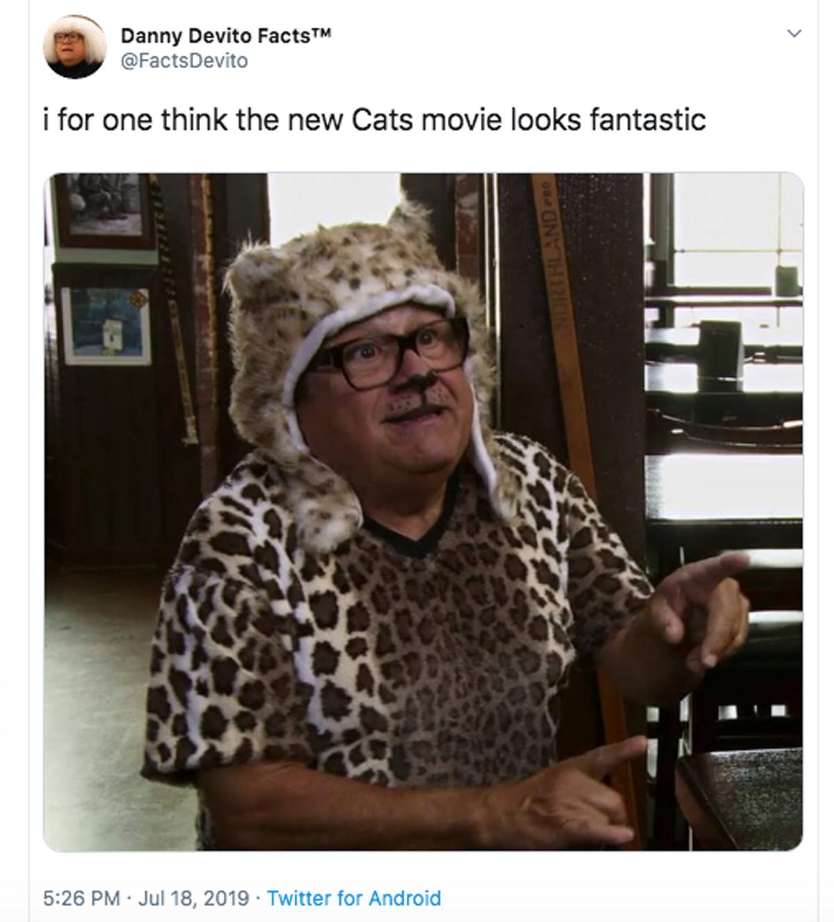 Grumpy Cat Wikipedia